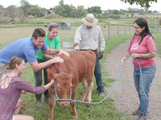 Animal Farm Michigan - Zuflucht für Tiere