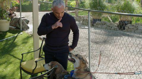 Cesar Millan: Guter Mensch, guter Hund auf National Geographic Wild