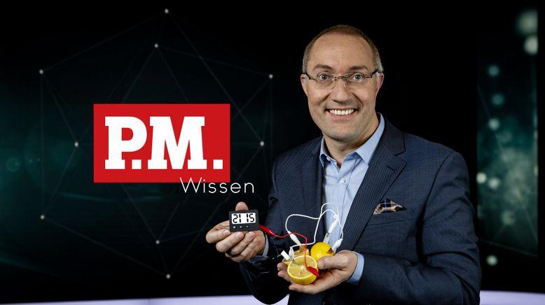 P.M. Wissen