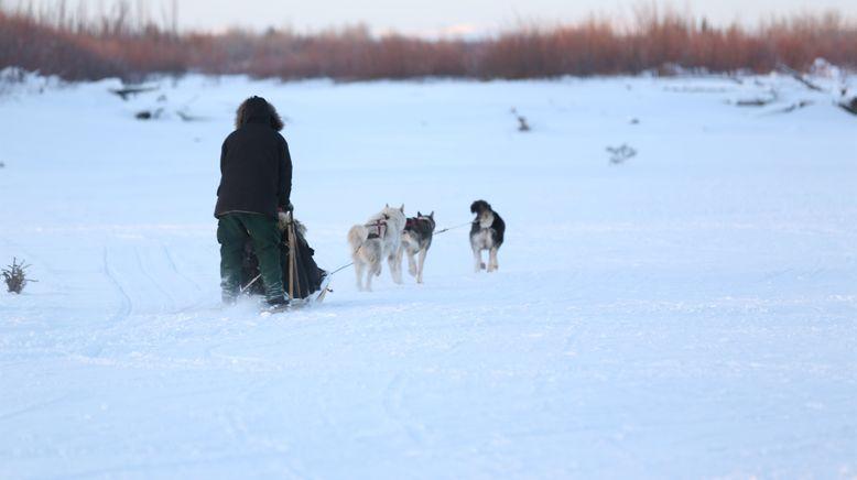 Nordalaska - Überleben am Polarkreis